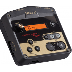 ROLAND TM-2 EX-DEMO
